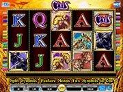 Play Cats Slot Machine Online