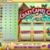 Crazy Camel Cash Slot