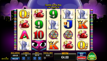 Kitty Cutie Slot - Play Nucleus Gaming Slots Online for Free