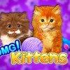 OMG Kittens Slot Online
