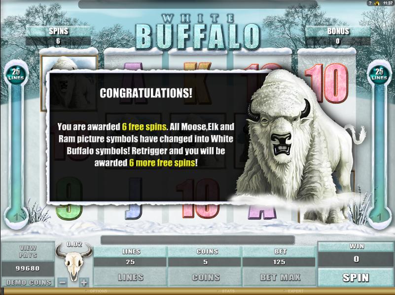 white buffalo slots