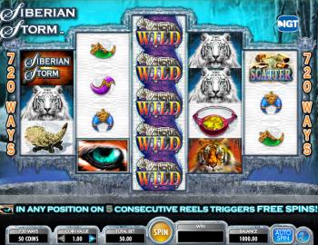 Siberian Storm – Gameplay