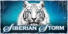 Siberian Storm Slot