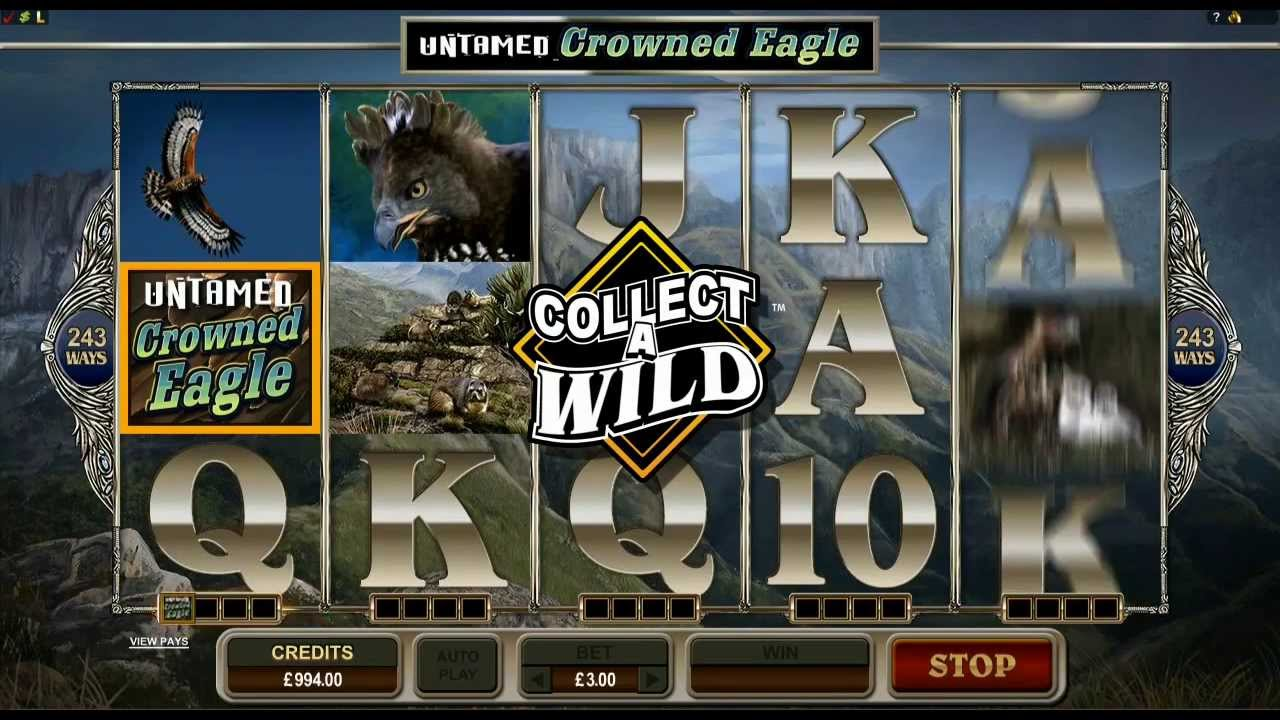 Untamed Crowned Eagle - Collect a Wild