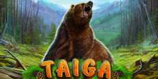Taiga