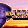 Double Buffalo Spirit Slot