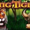 Play King Tiger Slot Machine