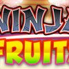 Play Ninja Fruits Slot