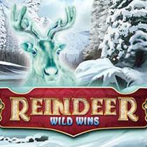 Reindeer Wild Wins Mobile Slot