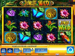 Play Jungle Wild Slot