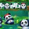 Play Panda Slot Online