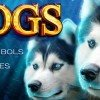Play Dogs Slot Online
