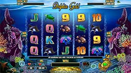 Play Dolphin Gold Slot