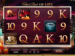 Play The Finer Reels of Life Slot