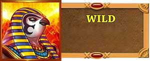 Riches of Ra Wilds
