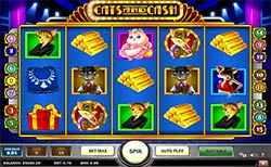 Play Cats and Cash Slot