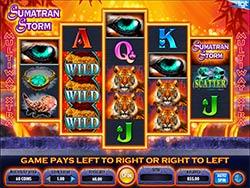 Play Sumatran Storm Slot