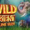 Wild Orient Slot Machine