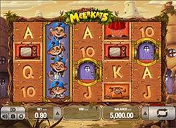 Spiele Meet The Meerkats - Video Slots Online