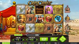 Cash & Camels Slot