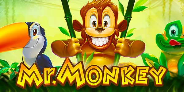Mr Monkey Slot Machine - Review and Free Online Game