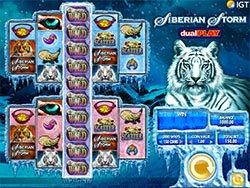 Siberian Storm Dual Play Slot