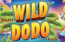 Wild Dodo