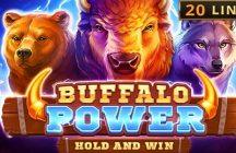 Buffalo Power: Hold and Win