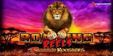Roaming Reels: Raging Roosters